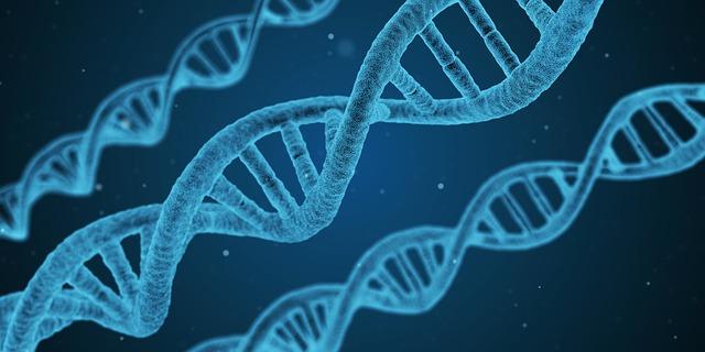 עורכת הדין שירה פרידן מתראיינת בתוכניתו של ניב רסקין בנושא פרשת הייעוץ הגנטי השגוי