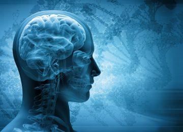 איחור באבחון דימום מוחי הותיר אם לארבעה עם נזק נוירולוגי קשה