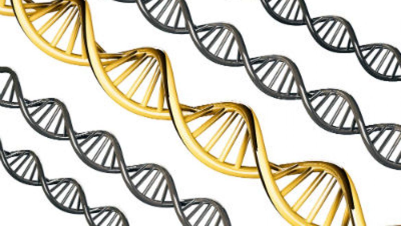 תביעה בגין ייעוץ גנטי בנושא סרטן השחלות
