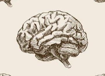 איחור באבחון אוטם איסכמי חריף במוח